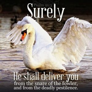 Pillow Cover-New- Christian- He Shall Deliver Swan